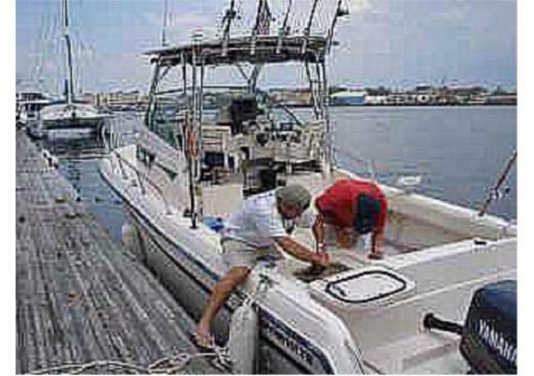 1997 27' Grady-White 272 Sailfish for sale in Charlestown