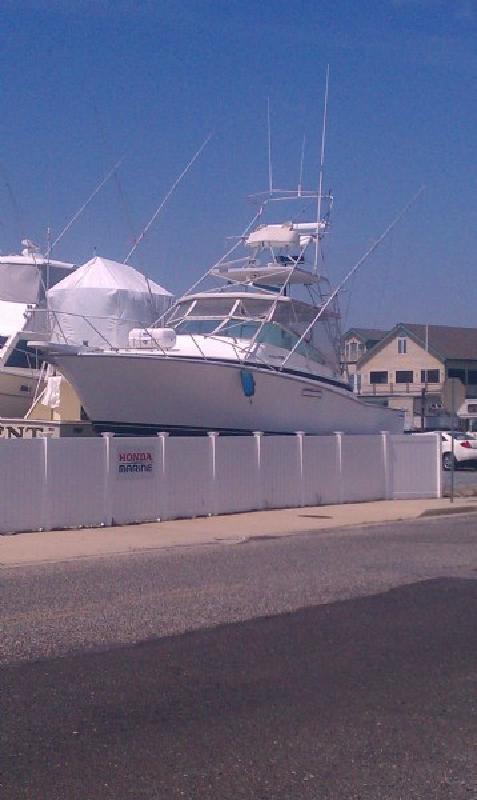 1985 38' Bertram Yachts 38 Special Sportfish