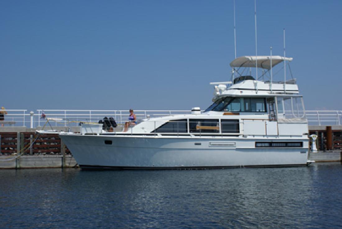 1982 42 Bertram Yachts 42 Motor Yacht For Sale In Bay
