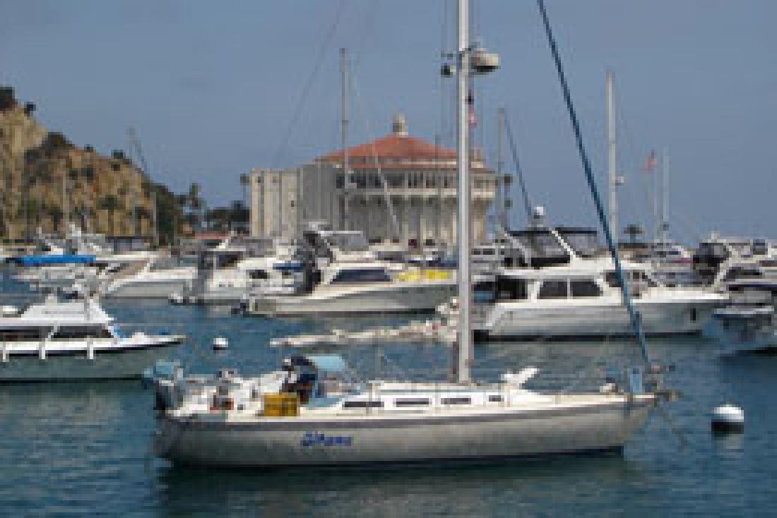 1984 36' CATALINA YACHTS Catalina