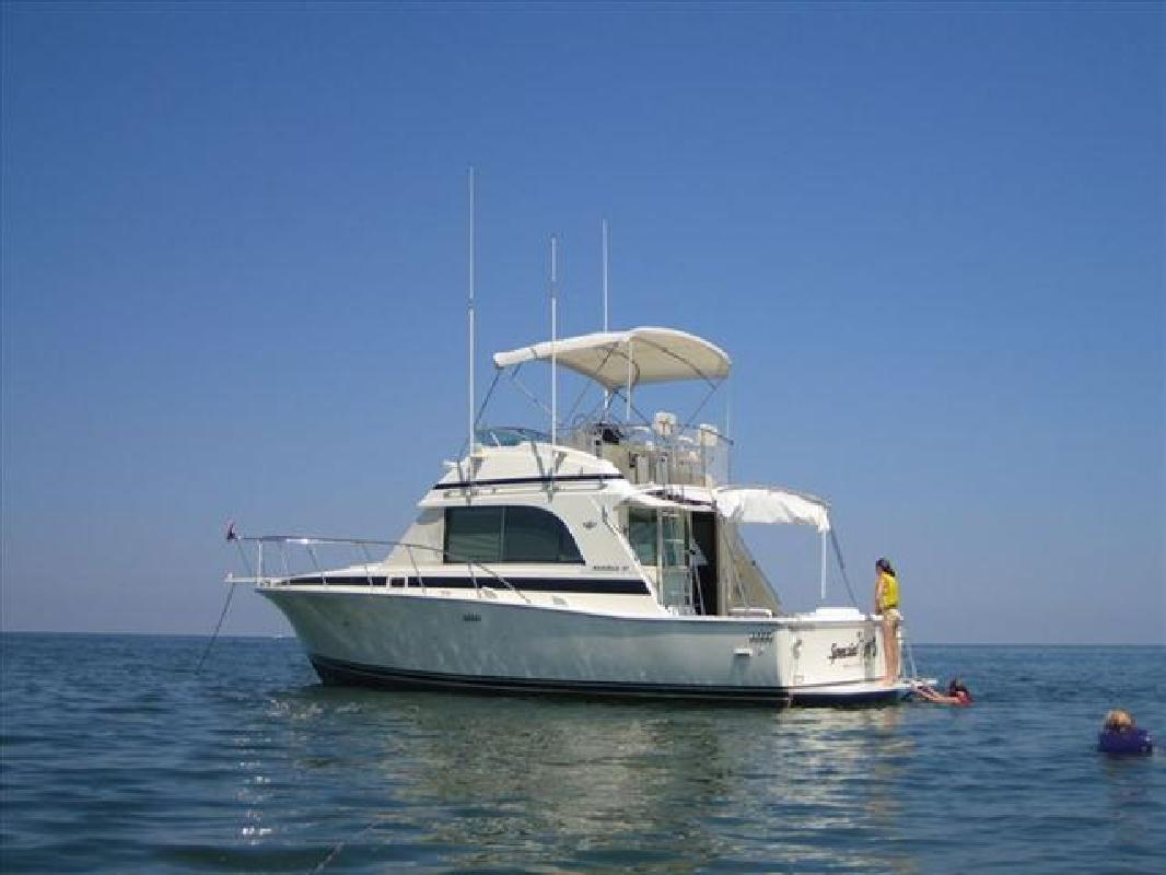 1989 33' Bertram Yachts Cruisers Flybridge
